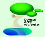 Bonsai Arte Viviente